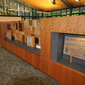 Display/Storage Cabinets: Cherry veneer with solid multi-specie samples and Ceas